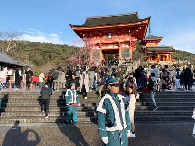 清水寺春の夜の特別拝観